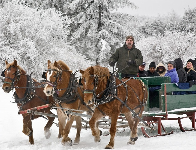 Horsedrawn Sleighrides - CANCELLED 1/20 & 1/21