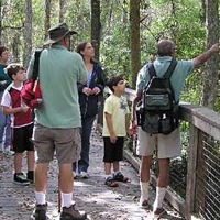 Weekend Guided Walks - Fall